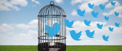 Enhancing Your Organization's Collective Intelligence using Twitter