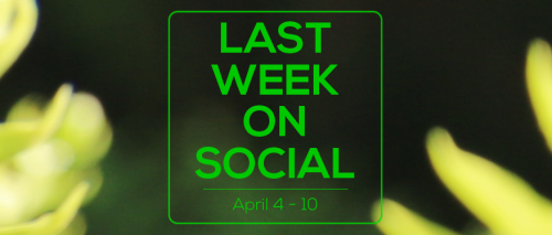 Last Week on Social - April 10
